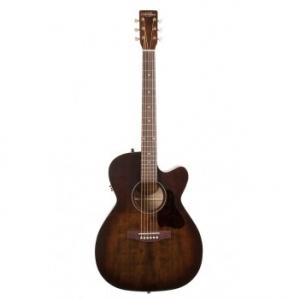 Guitare folk Art et Lutheries 42340 electro
